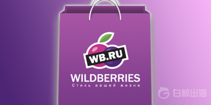 wildberries-marketplace-russia.png