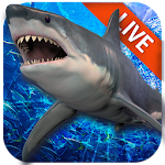 Live Wallpaper with Shark in the Ocean