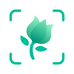PictureThis: Identify Plant, Flower, Weed and More